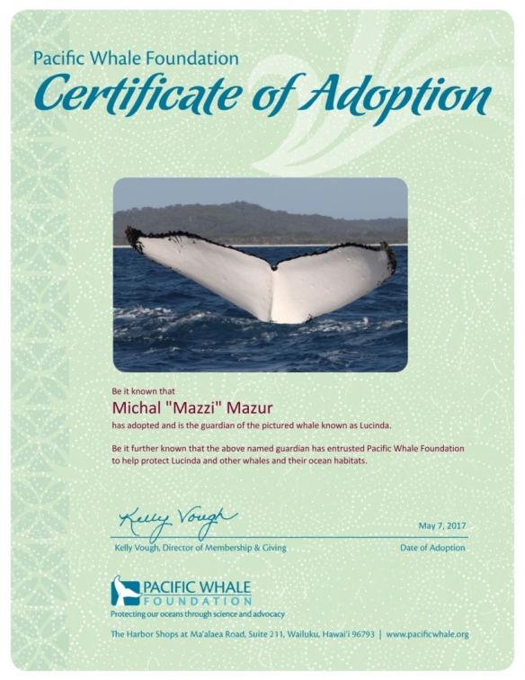 adoption-certificate-b4185195.jpg