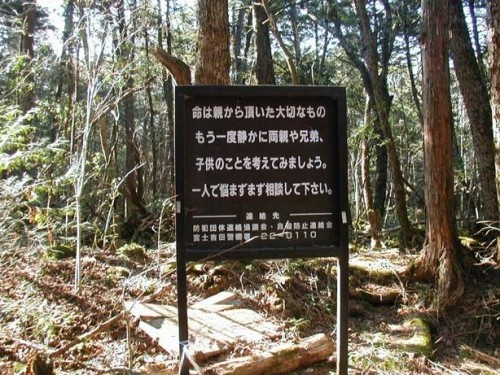 Aokigahara-forest-of-suicides-002