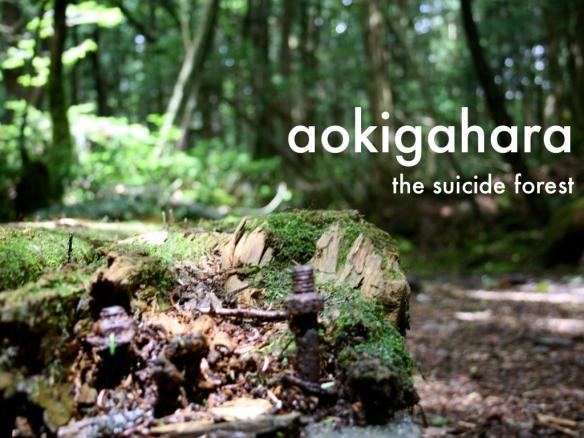 aokigahara-title-001